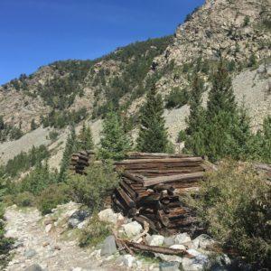 Log cabins along Lake Como Rd
