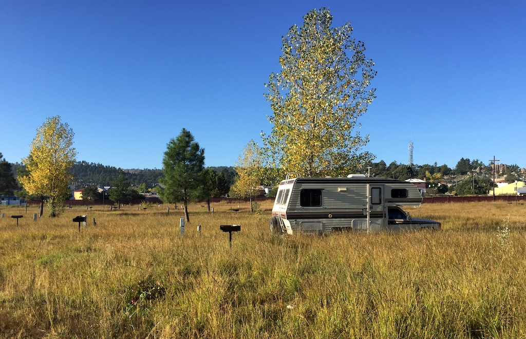 Zennie in camp on our Copper Canyon road trip
