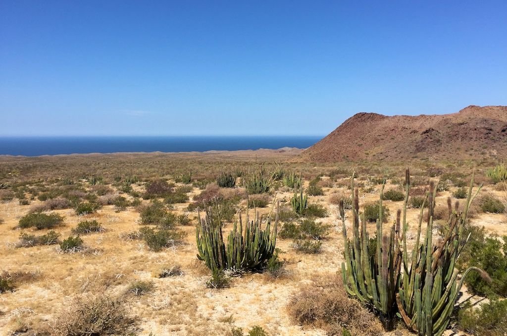 Desert and sea vistas on the Sonora coast highway, Mexico
