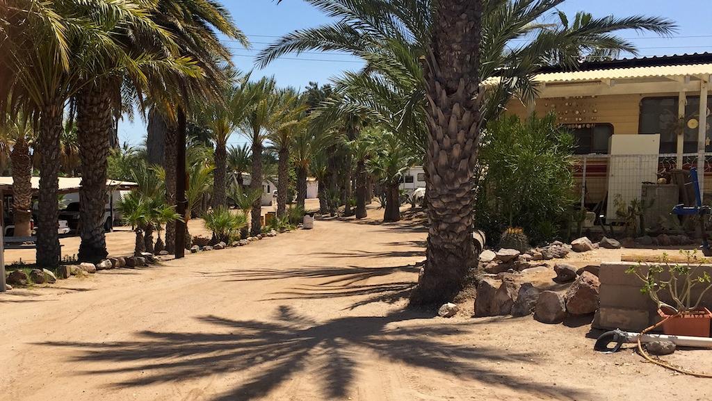Islandia campground and RV resort in Bahia Kino, Sonora, Mexico