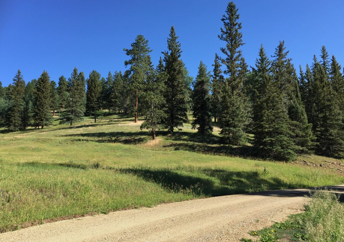 Free camping in New Mexico, Carson National Forest