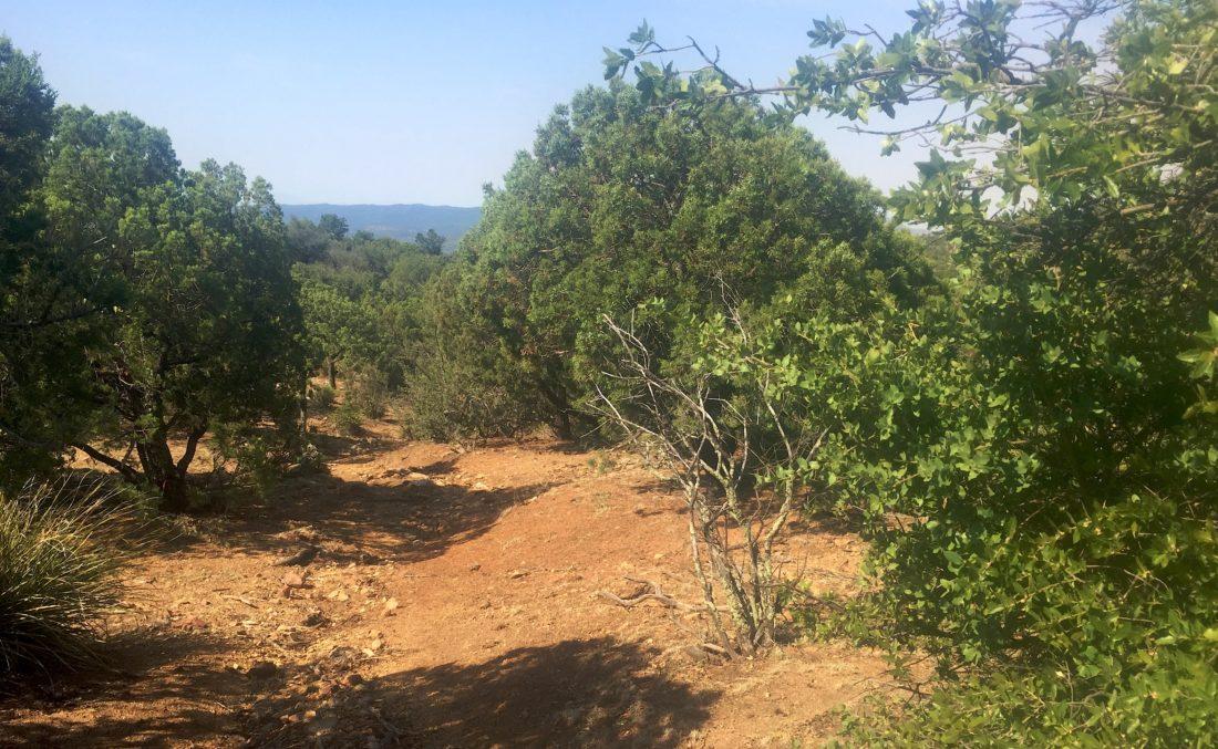 Hiking the trail near Cattlemen Trail