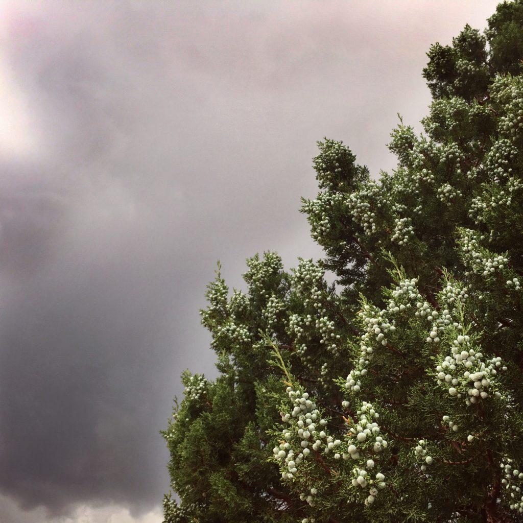 Dark clouds bring monsoon rains